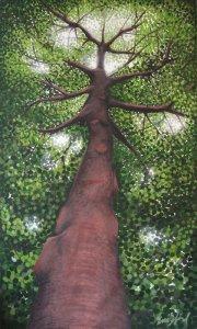 tree-emisfard